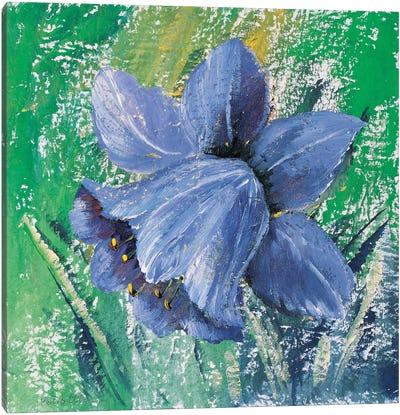 Purple Calyx Canvas Art Print