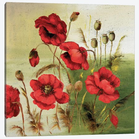Red Poppies Composition I 3-Piece Canvas #INA40} by Katharina Schöttler Canvas Wall Art
