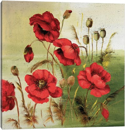 Red Poppies Composition I Canvas Art Print