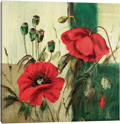 Red Poppies Composition II Canvas Art Print