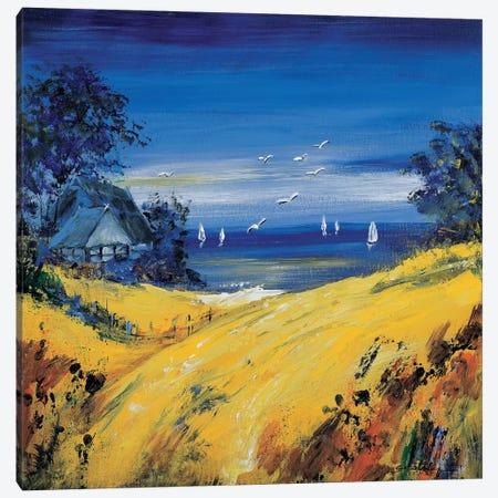 The Sea And Birds Canvas Print #INA46} by Katharina Schöttler Canvas Print