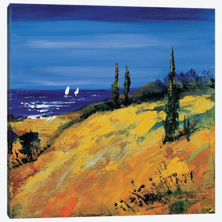 The Sea And Dunes Canvas Print #INA48} by Katharina Schöttler Canvas Artwork