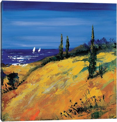 The Sea And Dunes Canvas Art Print
