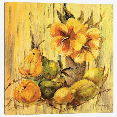 Yellow Creation I Canvas Print #INA58} by Katharina Schöttler Art Print