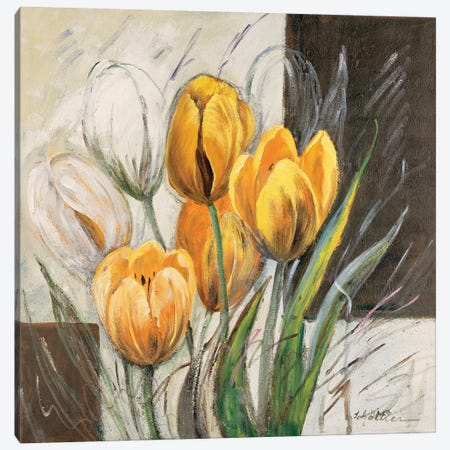 Yellow Tulips Canvas Print #INA60} by Katharina Schöttler Canvas Art