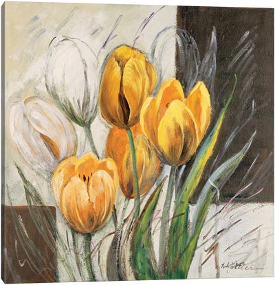 Yellow Tulips Canvas Art Print