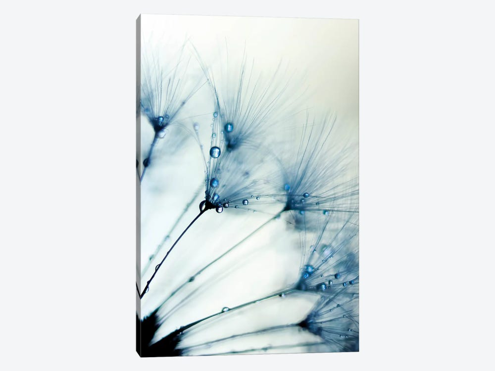 Misty Blue II by Ingrid Beddoes 1-piece Canvas Art Print