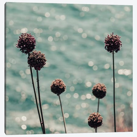 Ocean Sparkle Canvas Print #INB105} by Ingrid Beddoes Canvas Print