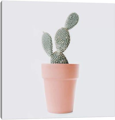 Cactus Love I Canvas Art Print