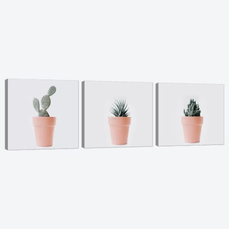 Cactus Love Triptych Canvas Print Set #INB3HSET001} by Ingrid Beddoes Art Print