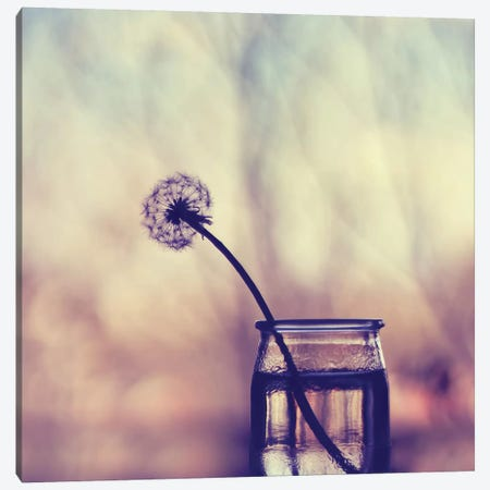 Lonely Canvas Print #INB50} by Ingrid Beddoes Canvas Art