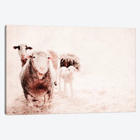 Milly'S Family Portrait Canvas Print #INB52} by Ingrid Beddoes Canvas Wall Art
