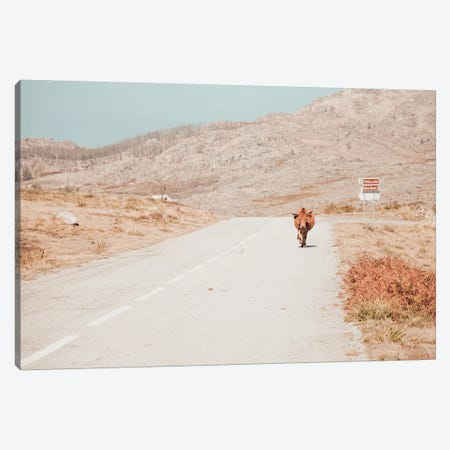 On The Road Canvas Print #INB58} by Ingrid Beddoes Canvas Art
