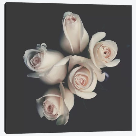 Roses Canvas Print #INB65} by Ingrid Beddoes Canvas Art