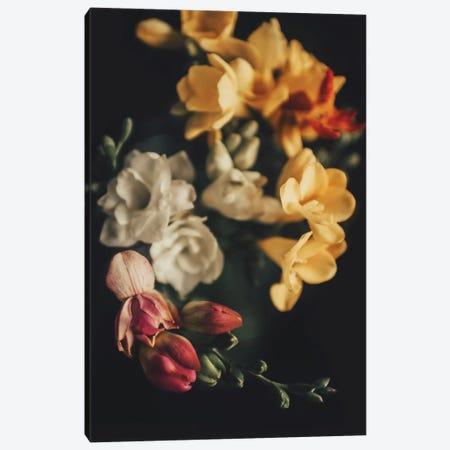 Spring Bouquet Canvas Print #INB73} by Ingrid Beddoes Canvas Artwork