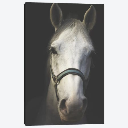 White Spirit Canvas Print #INB93} by Ingrid Beddoes Canvas Wall Art