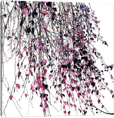 Willow Pink Canvas Art Print