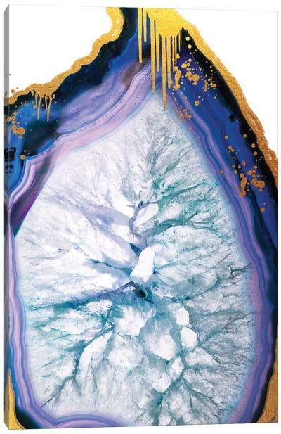 Blue Merle Gold Drip Canvas Art Print