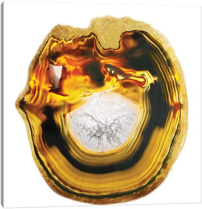 Smelted Amber Canvas Art Print