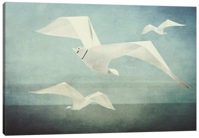 Seagulls Canvas Art Print