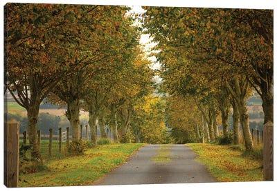 Colors Of Autumn Canvas Art Print