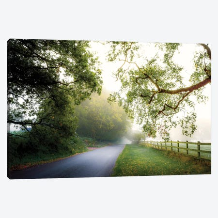 October's Fog Canvas Print #INO3} by Adelino Goncalves Canvas Artwork
