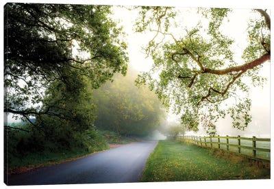 October's Fog Canvas Art Print