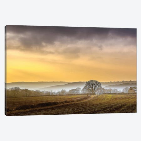 The Farm Canvas Print #INO5} by Adelino Gonçalves Canvas Print