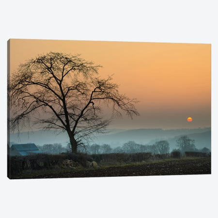 Morning Sun Canvas Print #INO8} by Adelino Goncalves Canvas Artwork