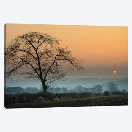 Morning Sun Canvas Print #INO8} by Adelino Goncalves Canvas Artwork
