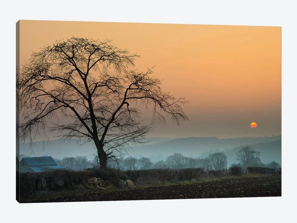 Morning Sun by Adelino Goncalves 1-piece Canvas Wall Art