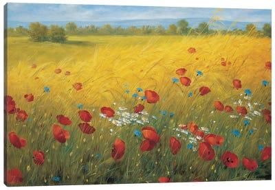 Sparkling Field I Canvas Art Print