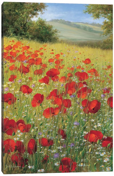 Sparkling Field II Canvas Art Print