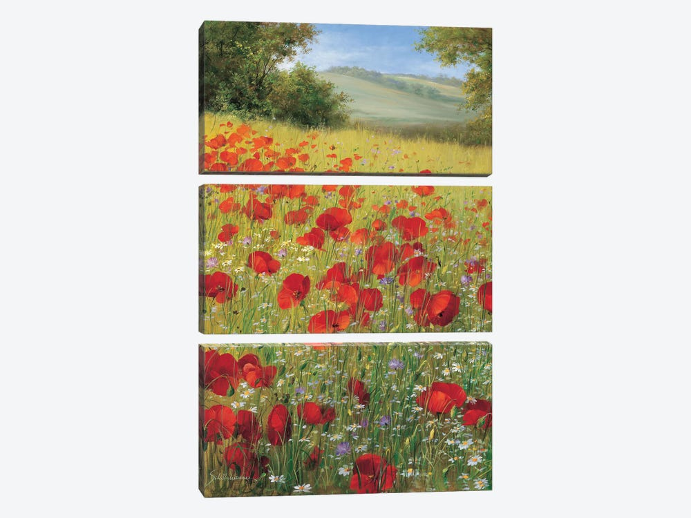 Sparkling Field II by Heinz Scholnhammer 3-piece Canvas Artwork