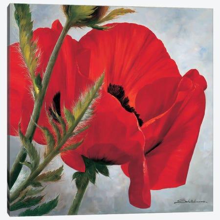 The Red Poppy Canvas Print #INZ4} by Heinz Scholnhammer Canvas Print