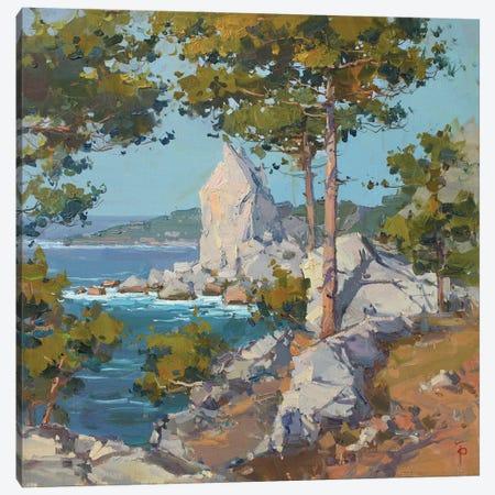 Swan Cliff Canvas Print #IPZ22} by Igor Pozdeev Canvas Print