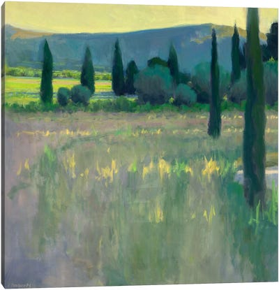 Evening At The Chateau Canvas Print #IRO2