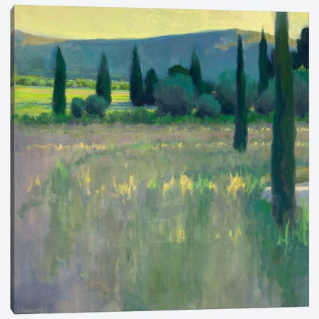 Evening At The Chateau Canvas Print #IRO2} by Ian Roberts Canvas Artwork