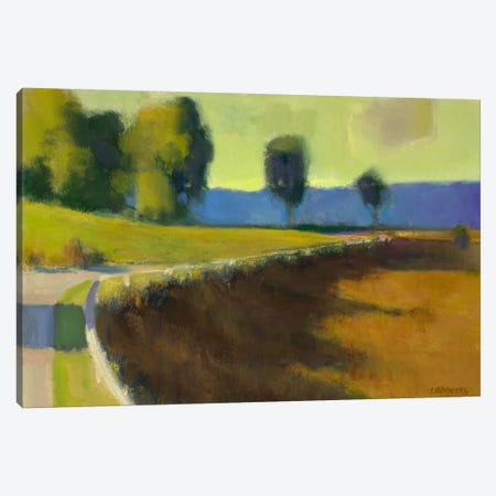 Late Afternoon, The Pyrenees Canvas Print #IRO3} by Ian Roberts Canvas Artwork