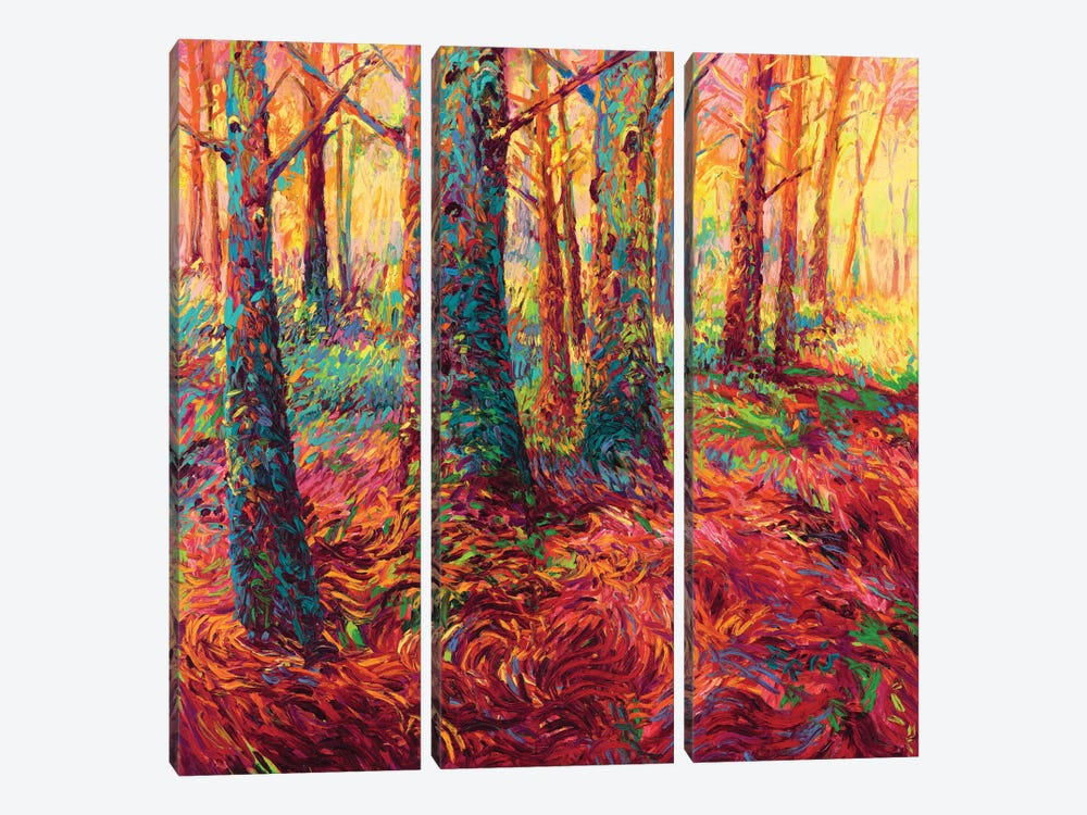 Redwood Fall by Iris Scott 3-piece Canvas Art Print