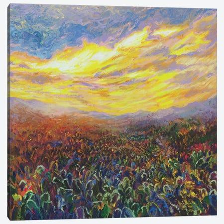 Cacti Sunrise Canvas Print #IRS104} by Iris Scott Canvas Wall Art
