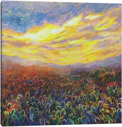 Cacti Sunrise Canvas Art Print