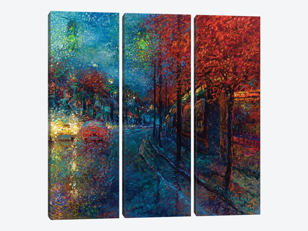 Coming Down The Pike by Iris Scott 3-piece Canvas Artwork