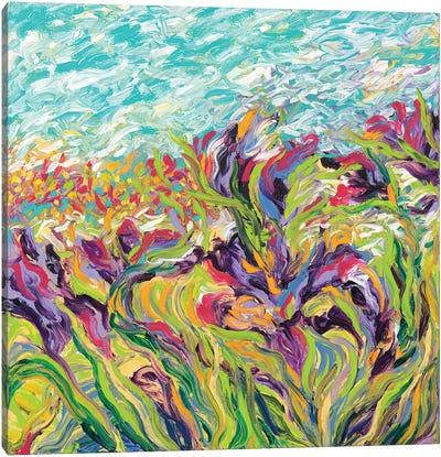 Irises I Canvas Art Print