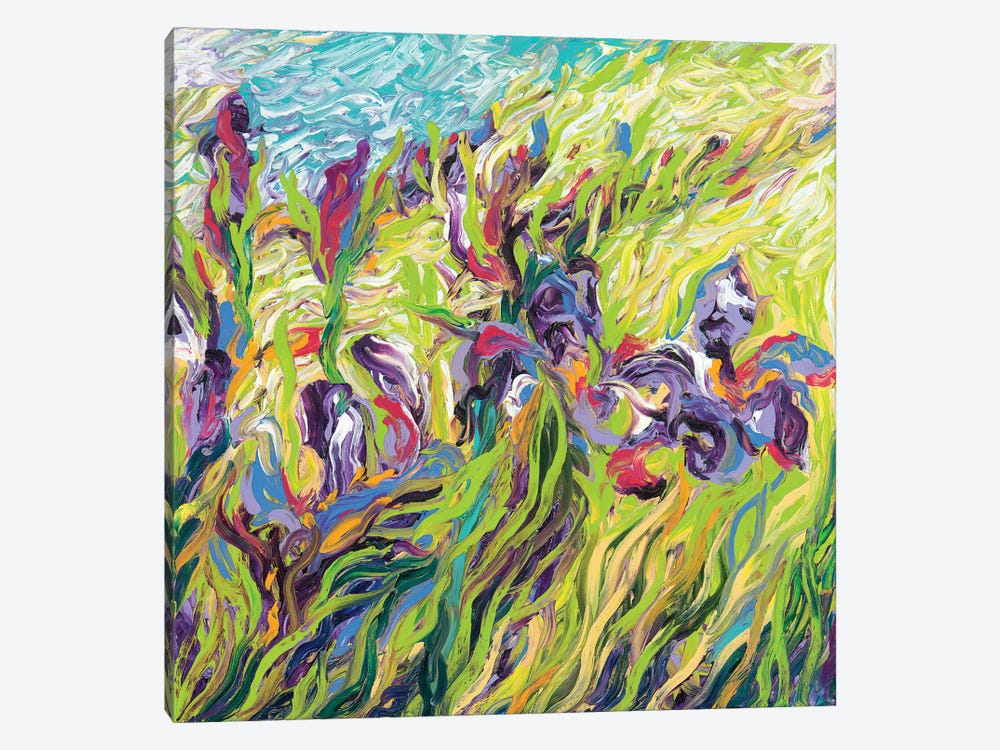 Irises II by Iris Scott 1-piece Canvas Artwork