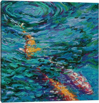 Koi Pool Canvas Art Print