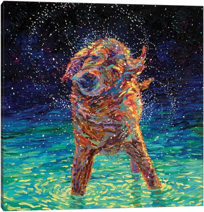 Moonlight Swim Canvas Print #IRS114