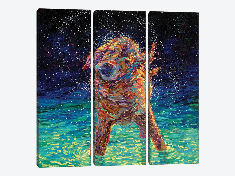 Moonlight Swim 3-piece Canvas Artwork
