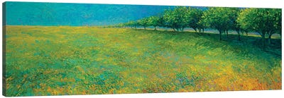 Orchard's Edge Canvas Print #IRS122