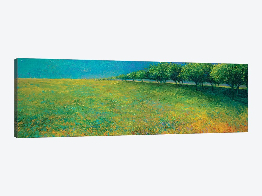 Orchard's Edge by Iris Scott 1-piece Canvas Print